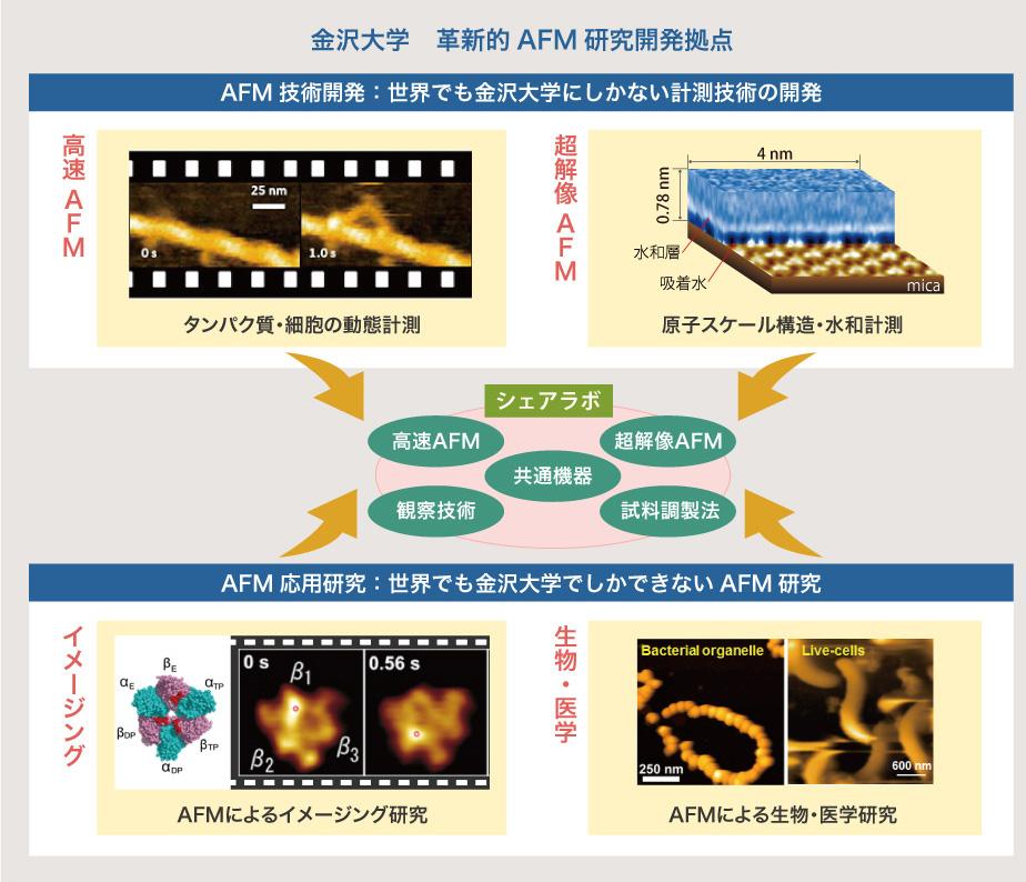 革新的原子間力顕微鏡技術による...