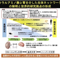 (挿入図)chozen-iwata