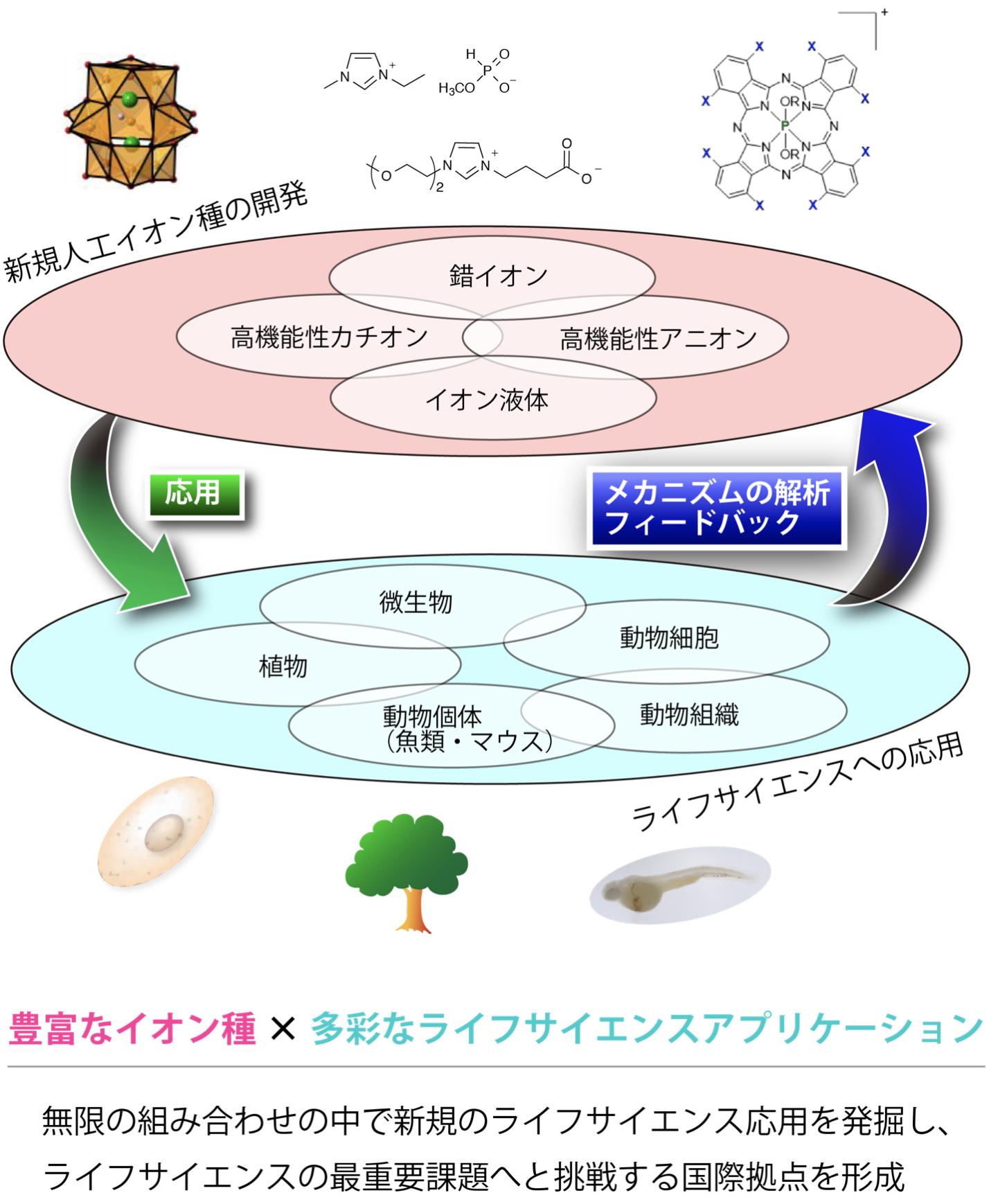 (挿入図)chozen-kuroda